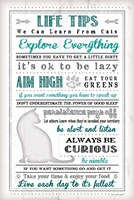 Life Tips - Cats Framed Print