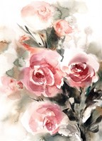 More Roses Fine-Art Print