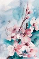 Aqua Blossoms Fine-Art Print