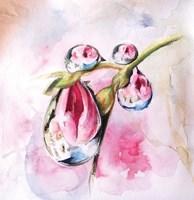 Droplets Fine-Art Print