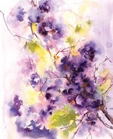 Deep Purples Fine-Art Print