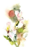 Spring Flower II Framed Print