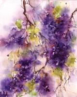 Lilac Blossoms Fine-Art Print