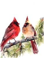 Cardinals III Framed Print