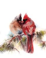 Cardinals V Fine-Art Print