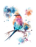 Pretty Bird Fine-Art Print
