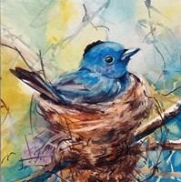 Nester Fine-Art Print