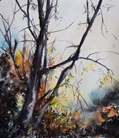 Forest Tree Fine-Art Print