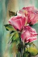 Rosy Fine-Art Print