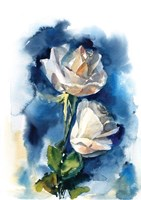 Indigo Roses Fine-Art Print