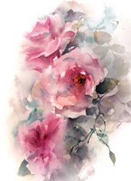 Roses in Blush Fine-Art Print