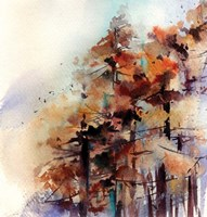 Fall Forest Fine-Art Print