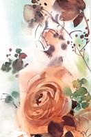Rosy Rose Framed Print