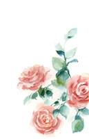 Peachy Petals Fine-Art Print