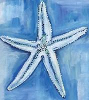 Starfish Blues Fine-Art Print
