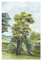 Scenic French Wallpaper II Fine-Art Print