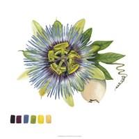 Brighton Blooms VI Fine-Art Print