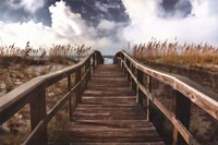 Path To Paradise Fine-Art Print