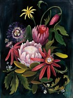 Flower Show II Fine-Art Print