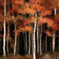 October Woods Fine-Art Print