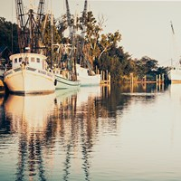 Sepia Shrimp Boats Fine-Art Print