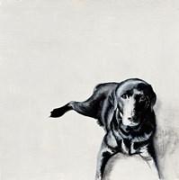 Jess Fine-Art Print