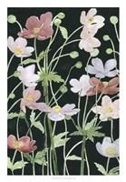 Anemone Dance III Fine-Art Print