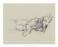 Dog Days III Fine-Art Print