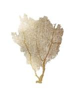 Gold Foil Sea Fan I Fine-Art Print
