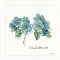 My Greenhouse Forget Me Not Fine-Art Print