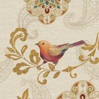 Bird Rainbow Orange Fine-Art Print