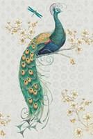 Ornate Peacock IXA Fine-Art Print