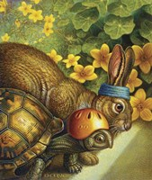 Tortoise And Hare Fine-Art Print