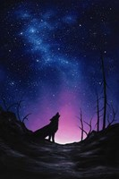 Starry Nights Fine-Art Print