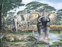 Unrest On The Serengeti Fine-Art Print