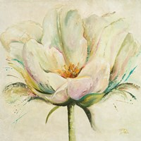 White Double Tulips II Fine-Art Print
