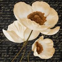 Evening Bloom I Fine-Art Print