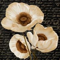 Evening Bloom II Fine-Art Print