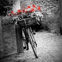Flower Bike Square Fine-Art Print