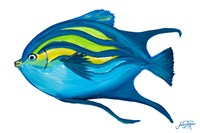 Fishy II Fine-Art Print