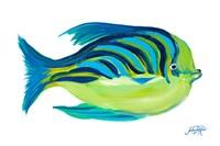 Fishy I Fine-Art Print