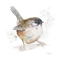 Watercolor Mountain Bird I Fine-Art Print