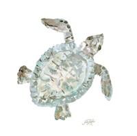 Neutral Turtle I Fine-Art Print
