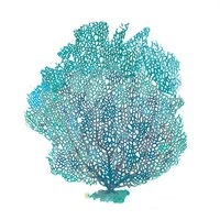 Teal Coral on White I Fine-Art Print