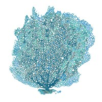 Teal Coral on White II Fine-Art Print