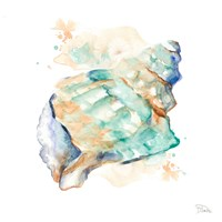 Blue and Green Shell Square Fine-Art Print