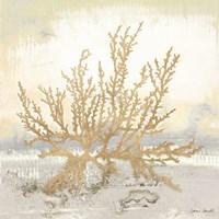 Neutral Coral I Fine-Art Print