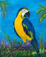 Island Birds II Fine-Art Print