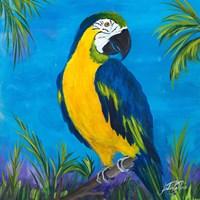 Island Birds Square II Fine-Art Print