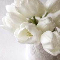Vanishing in the White Elegance Square Fine-Art Print